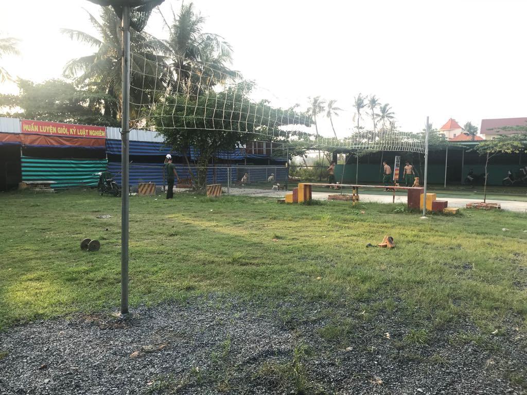 Địa chỉ trông giữ chó ngày lễ tết uy tín tại Tphcm